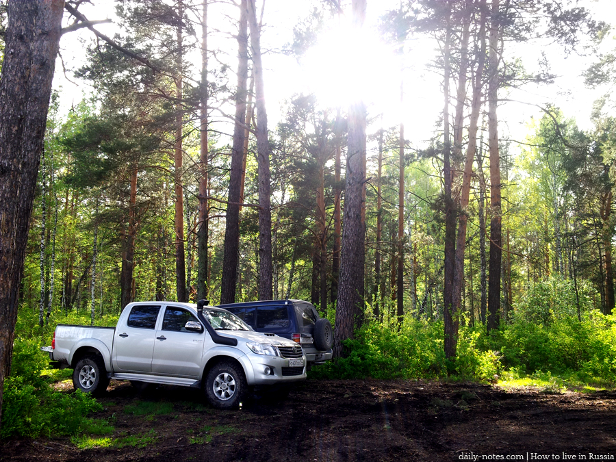 Cars in Siberian forest