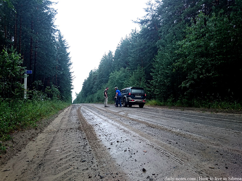 Road in Siberian forest