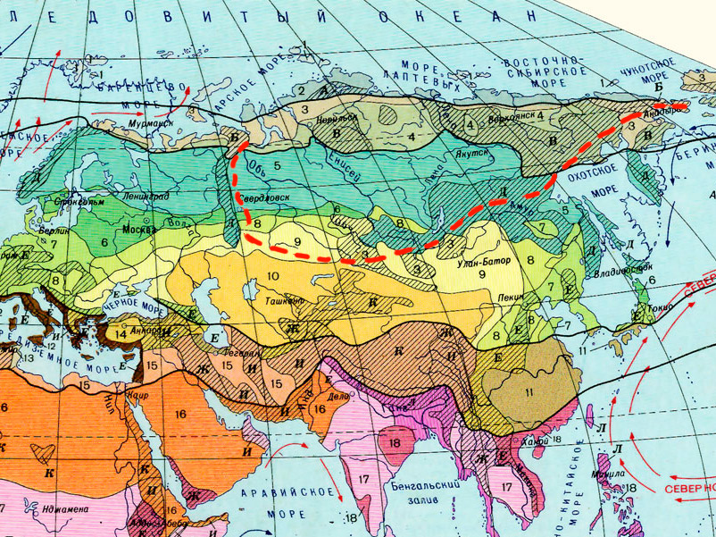 Siberian geographical zones