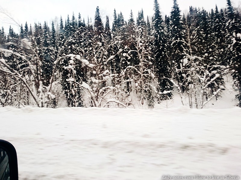 Siberian nature, road to Sheregesh